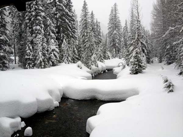 Creek-With-Fresh-Snow