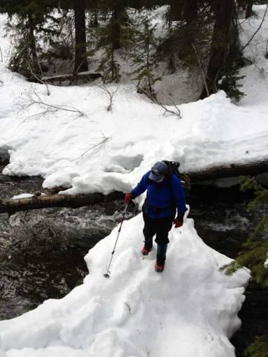 Testing-the-ice-bridge